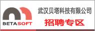 武汉贝塔科技有限公司